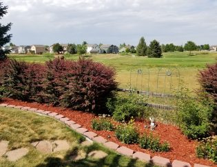 Mulching Services in Fort Collins, CO